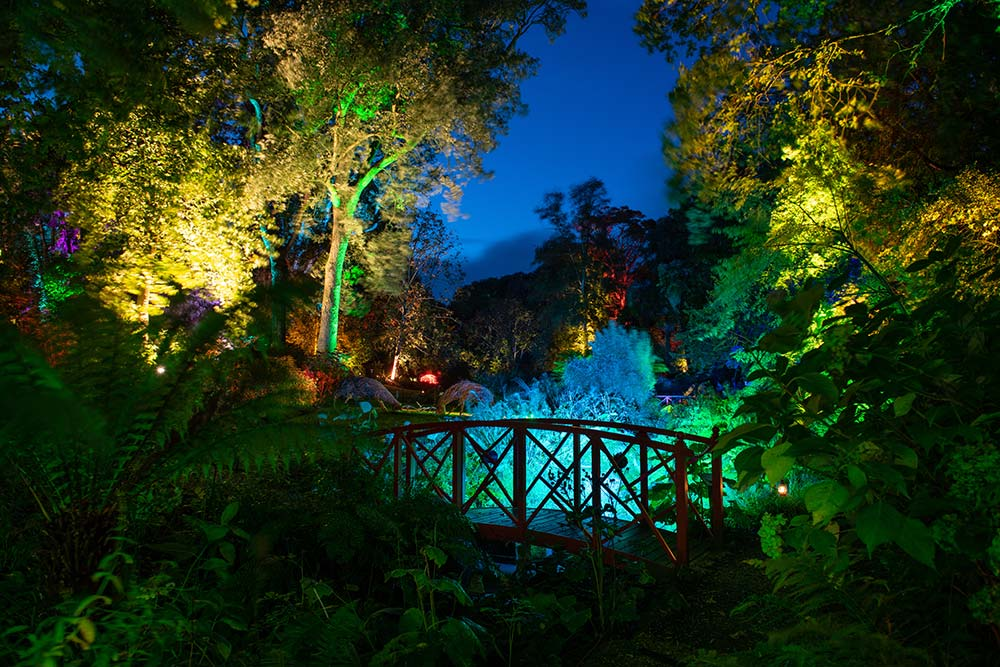 Red bridge at Abbotsbury Subtropical Gardens during floodlighting