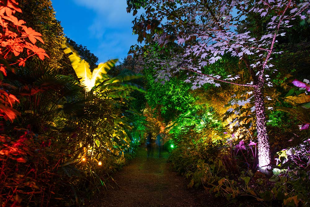 Walking through the Enchanted Floodlit Gardens at Abbotsbury