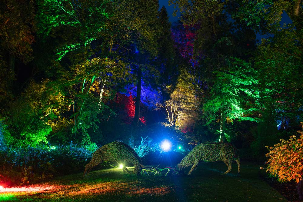 Willow Deer At The Enchanted Floodlit Gardens At Abbotsbury